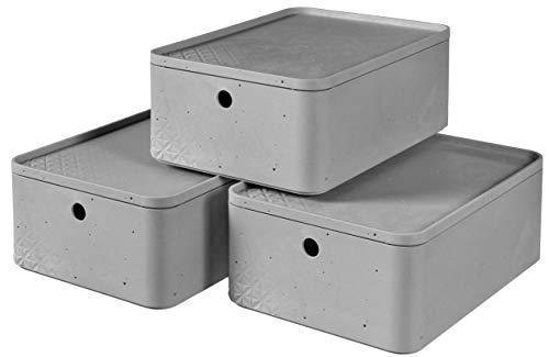 Curver Box M mit Deckel, 3er-Set, Hellgrau (Beton)
