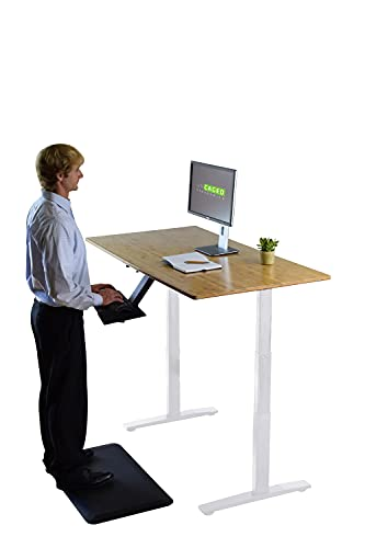 Rise UP Dual Motor Electric Standing Desk 60x30' Bamboo Desktop Premium Ergonomic Adjustable Height sit Stand up Home Office Computer Desk Table Motorized Powered Modern Furniture Small Standup