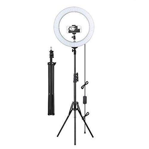 EDIO 2 Ezone Ring Light with 8 feet Tripod Stand with Mobile Phone Clip, 10 inch 30W Dimmable LED Ring Light with Remote Control (Black, Supports Up to 2000 g) (10 Inch Ring Light)