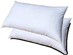 in budget affordable Two pillow-shaped inserts 12×18, premium filling, machine washable, rectangular Pillowflex set …
