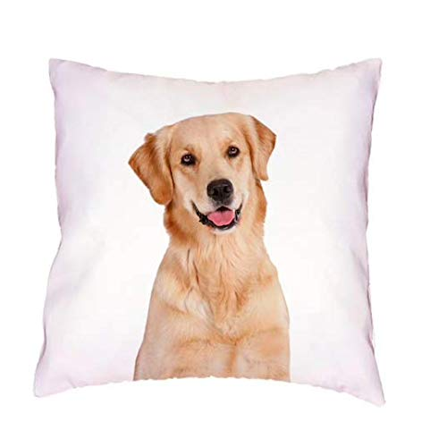 The Beach Stop Adorable Dog Print Soft Cushion Covers (golden Labrador)