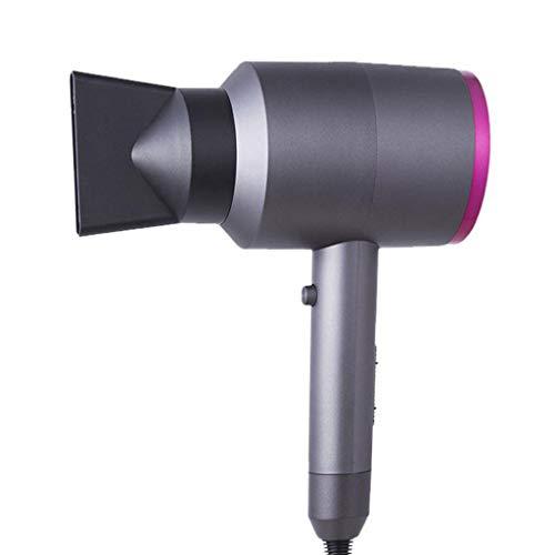 Sèche-cheveux, Ventilateur d'air chaud et froid de la température constante, dessiccateur négatif de cheveux de ménage de dessiccateur d'ion