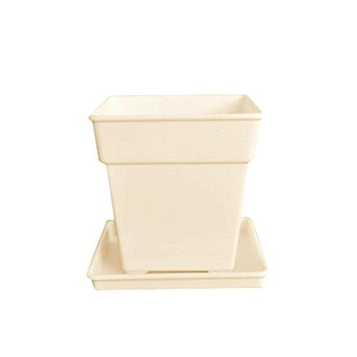 Tellm 5 pcs/lot romain Plastique Pot de fleurs Pot de fleurs Pot de fleurs carré Table avec support inférieur 5 pcs en Lot, Résine, abricot, 12*10*8.5cm