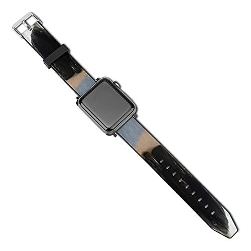 Xiaoxian Black Pug Dog Cuccioli Sostituire il classico cinturino Apple Watch di iWatch serie SE 6/5/4/3/2/1, colore: nero-nero Pug cane cuccioli1