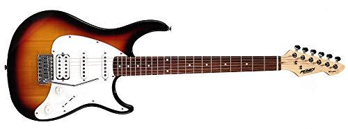 Peavey Raptor plus E-Gitarre Sunburst Sunburst