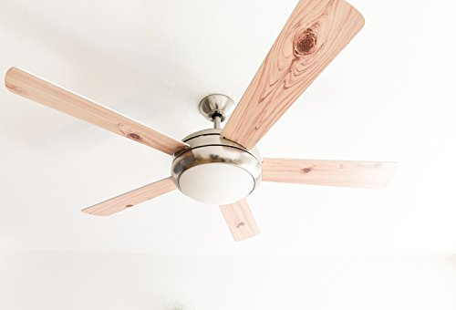 AireRyder Deckenventilator Ursa mit Beleuchtung und Fernbedienung, Gehäuse Satin Nickel, Flügelfarbe Weiß/Kiefer, 132 cm