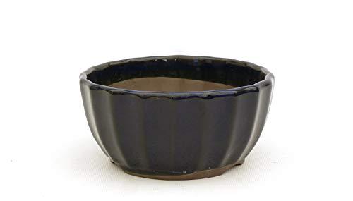 Bonsai Pavia | Macetas para Bonsais Japonesa Esmaltada 12,5 cm | con Forma de Flor de Loto | Esmaltada en Color Azul Oscuro | Tamaño 12,5x7 cm