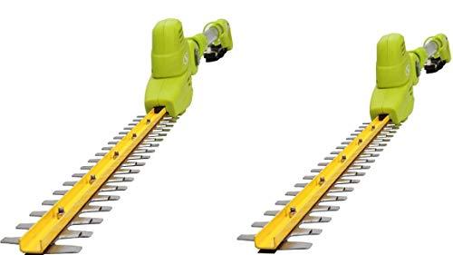 Buy Bargain Sun Joe SJH901E 18-Inch Electric Pole Hedge Trimmer (Green 2-Pack)