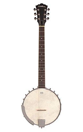 Washburn 6 String Banjo Matte Natural