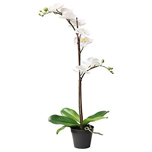 IKEA 802.859.09 Fejka - Planta Artificial en Maceta (orquídea), Color Blanco