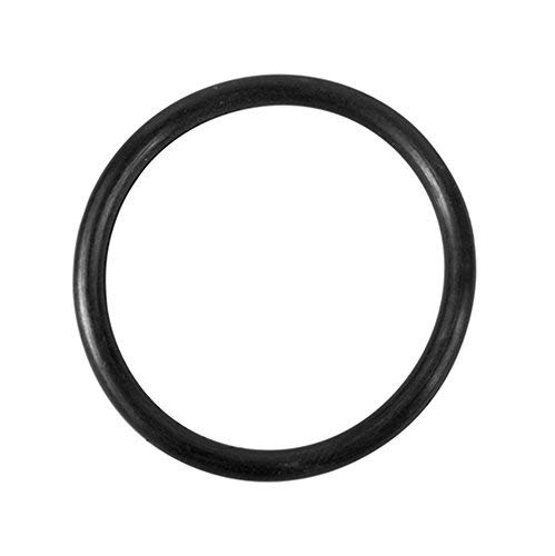 Replacement O-Ring for Summer Waves SFS1500 & SFS1000 Filter Systems