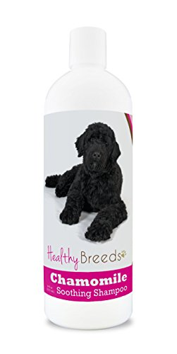 Healthy Breeds Chamomile Dog Shampoo & Conditioner with Oatmeal & Aloe for Portuguese Water Dog - OVER 200 BREEDS - 8 oz - Gentle for Dry Itchy Skin - Safe with Flea and Tick Topicals