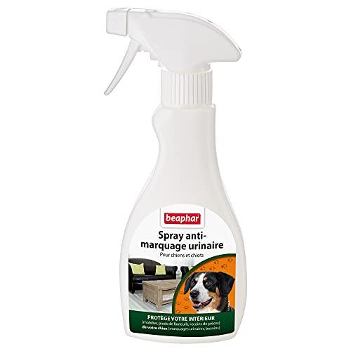 BEAPHAR–Spray anti-marquage urinaire pour chien et chiot - Protège le mobilier intérieur contre les comportements indésirables (marquages urinaires)–Pulvérisateur 250 ml-Lot de 2