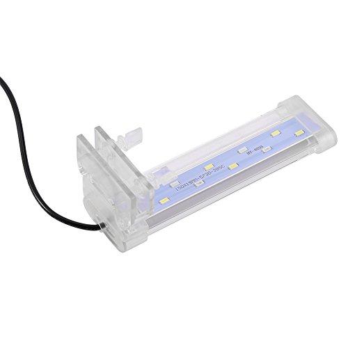 Lamp met klem, verstelbaar, verlichting voor aquarium, vissen, zachte arm, van glas, LED-lamp, lamp, met clip voor vistank, aquarium, decoratie EU-stekker
