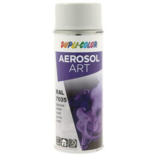 Duplicolor 655821 Peinture Aérosol Art Ra l 9010 Satin, 400 ml light grey