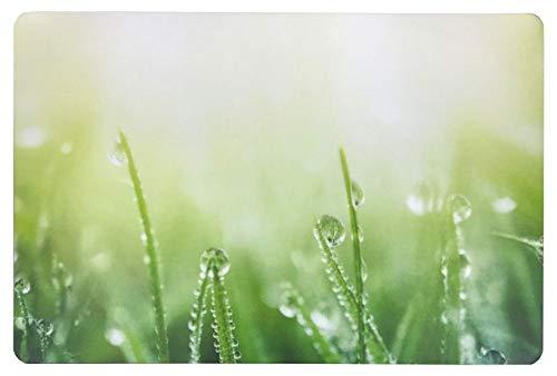 Schreibtischunterlage Gras mit Tau/Tropfen grün 40 x 60 cm abwischbar