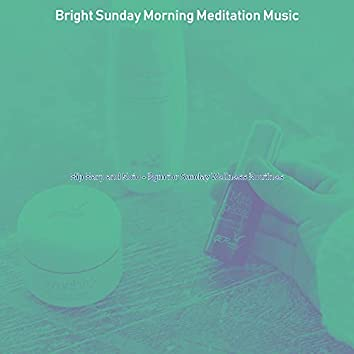 Hip Harp and Koto - Bgm for Sunday Wellness Routines