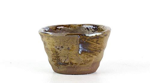 Bonsai Pavia | Macetas para Bonsais Yokkaichi A01-01-1 Maceta Japonesa | Color Variado | Tamaño 8x5 cm