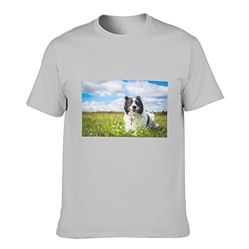 Camiseta de algodón para hombre, diseño de Border Collie Dog Gris plateado. XL
