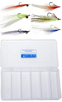 Clouser Minnow & Deceiver Baitfish Fly Collection - 6 Flies + Fly Box
