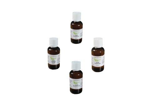 Luftwäscher Duftkompositionen 4 Flaschen a 50ml(Gesamt 200ml) Grüner Apfel,Blumenwiese,Zitronenschale,Orange