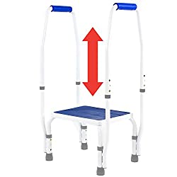 DoubleSafe Deluxe Step Stool with Handrail