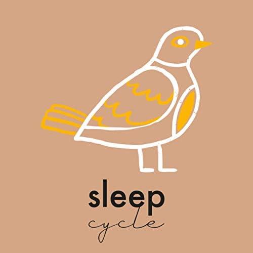 Canzoni per Bambini TaTaTa & Ciclo del Sonno