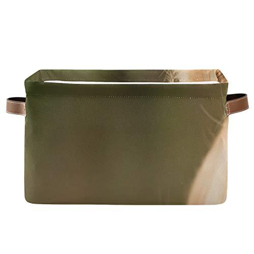 ALALAL Caja de Almacenamiento con Compartimento Rectangular Beauty Golden Retriever Dog Relájese en contenedores de Almacenamiento Decorativos con Fuerte Mango de Cuero PU Cubo de almacen