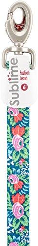 Coastal Sublime 6 'Laisse, Fleurs avec Rayures Bleu Sarcelle, 2,5 cm