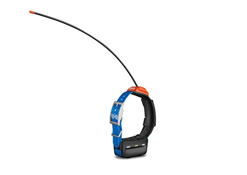 Garmin T5 GPS Dog Collar