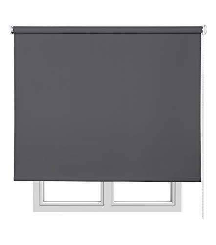 Estores Basic Opaco Estor Enrollable, Tela, Gris Oscuro, 120 x 175 cm