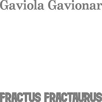 Gaviola Gavionar