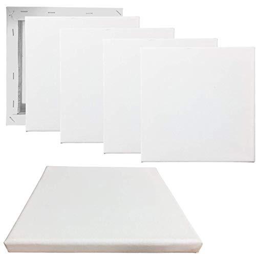 MIKOPA キャンバス 画材 (選べるサイズ) 油絵 絵画 油彩 ボード 木枠 張り アクリル兼用 6枚セット (10×10cm)