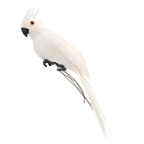 DowoaPappagallo di 25 cm, Mini Uccelli Colorati Simulazione Modello Imitazione Uccello Modello casa Ornamento Puntelli Fotografia