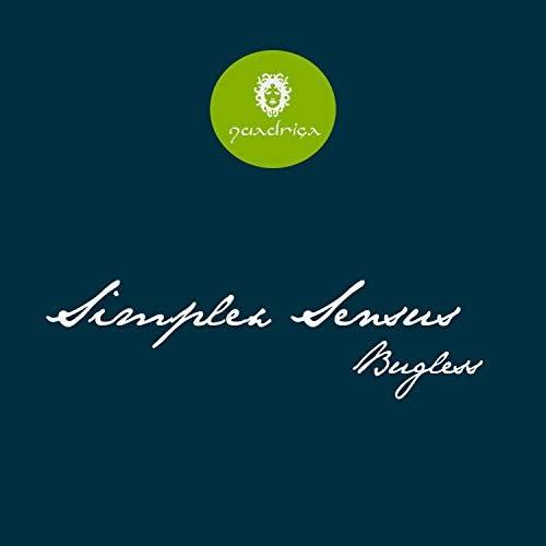 Simplex Sensus