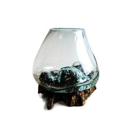 Wurzelholz   Vase   Kaffeewurzel   Glasvase   Handarbeit   jede Vase ein Unikat   klein