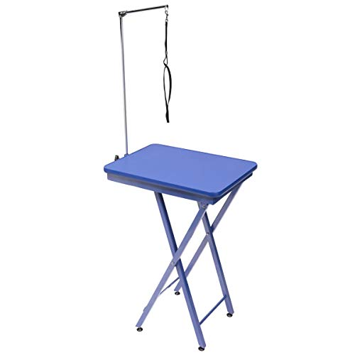 GROOM PROFESSIONAL Ring Side Table Blue