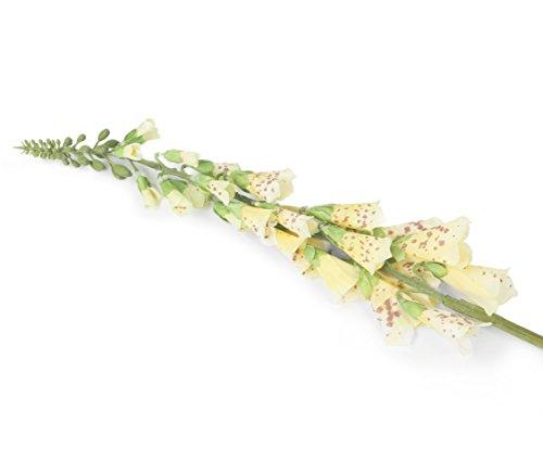 Bloemen Elegantie Kunstmatige Enkele Stem Single Geel