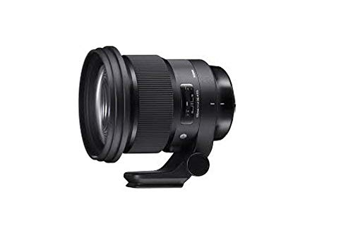 Sigma 105mm F1,4 DG HSM Art Objektiv (105mm Filtergewinde) für Sony-E Objektivbajonett