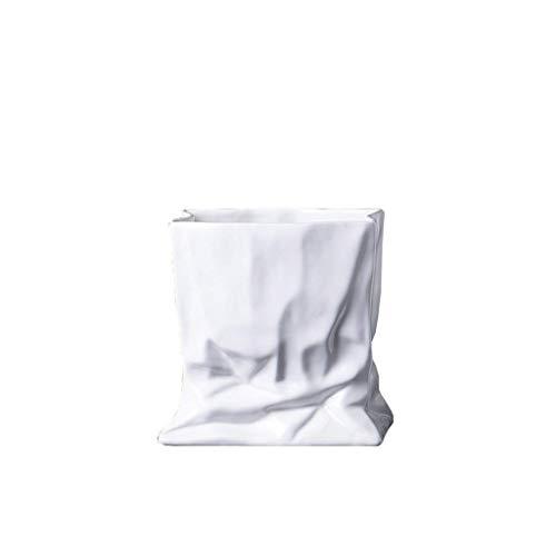 Ayanx Florero plisado de cerámica con adornos blancos, sala de estar, hogar, TV armario, cerámica y agua cultivada flor (tamaño: M)
