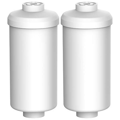 AQUA CREST PF-2 Fluoride Water Filter, Fluoride / Arsenic Reduction Water Filter, Compatible with Gravity Filtration System (Pack of 2)