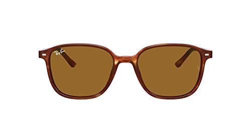 Óculos de sol ray ban leonard rb2193 954/33 53 tartaruga lentes b15 marrom