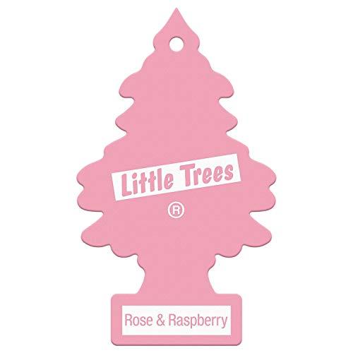 WUNDER-BAUM 35121 Lufterfrischer Rose & Raspberry, Rosa/Weiß