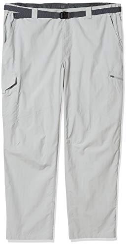 Columbia Silver Ridge Cargohose für Herren, feuchtigkeitsableitend, Sonnenschutz, Herren, Men's Silver Ridge™ Cargo Pant, cool Grey, 40W x 34L