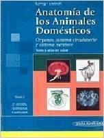 Anatomía de los Animales Domésticos: Órganos, Sistema Cir