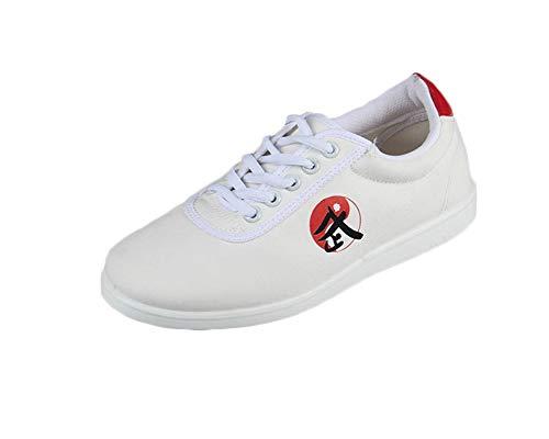 Unisex Negro Chino Tradicional Zapatos De Tai Chi Viejo Beijing Kung Fu Suela De Goma Blanco 41 EU