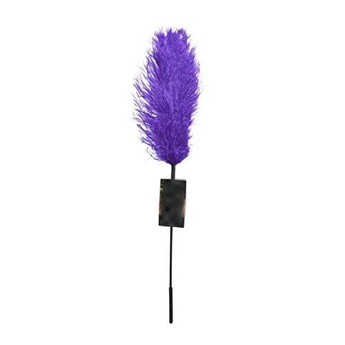 Purple Feather Tickler Adult S&Éx T'Ôy
