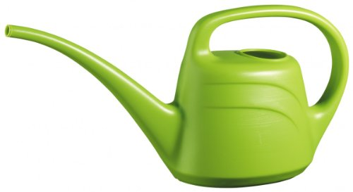 Eden 2 litre indoor watering can mint green