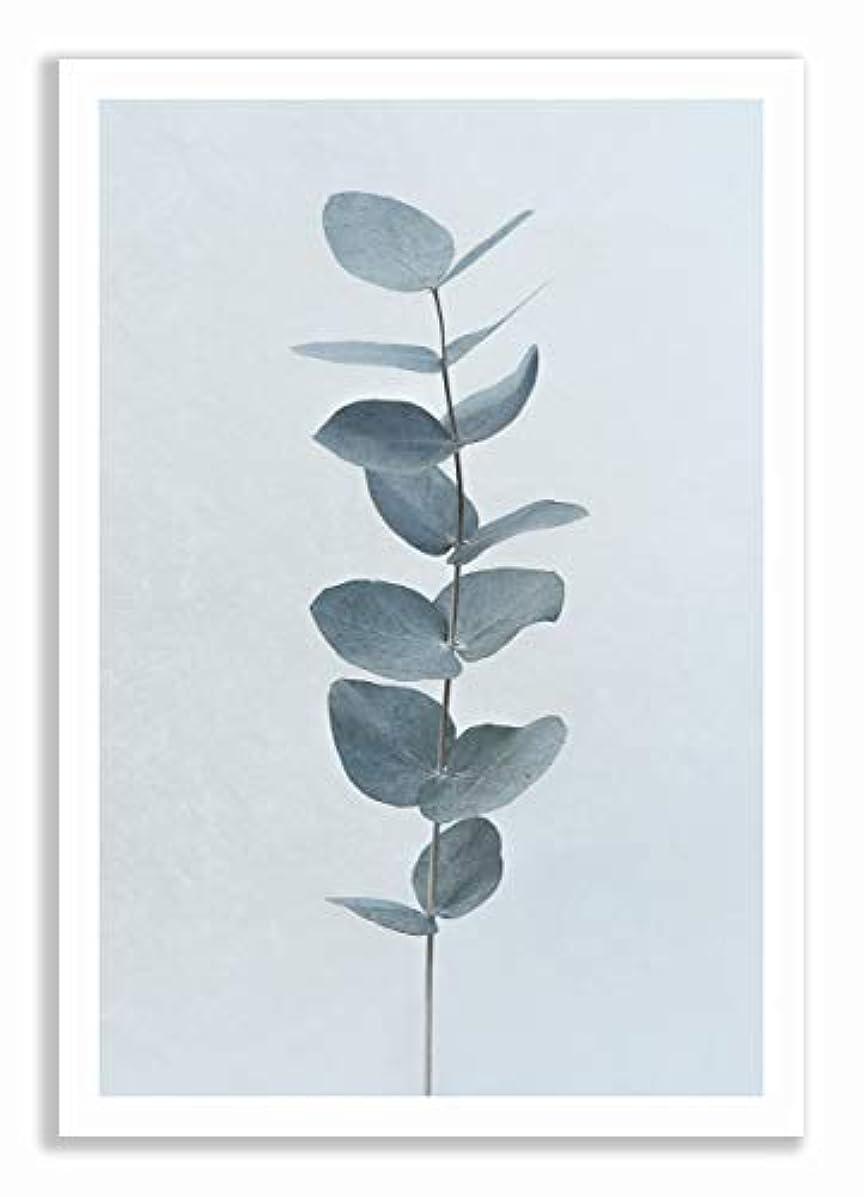 Eucalyptus Black Satin Aluminium Frame, Full Format, Multicolored, 30x40