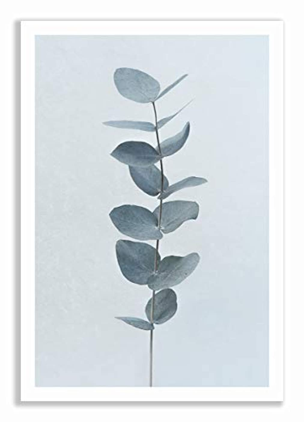 Eucalyptus Black Satin Aluminium Frame, Full Format, Multicolored, 30x40